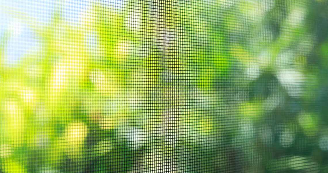 Photo of a flyscreen with garden backdrop
